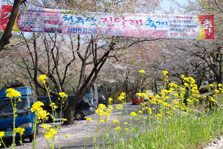 yuchai20080411cheonju_02.jpg